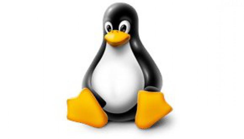 Linux Sunucuda DDOS ve Syn Saldırılarını Engelleme